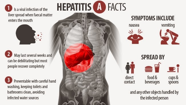 Hepatitis a Facts