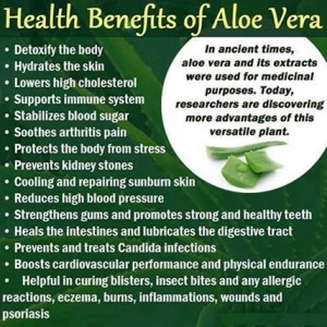 benefits-of-aloe-vera