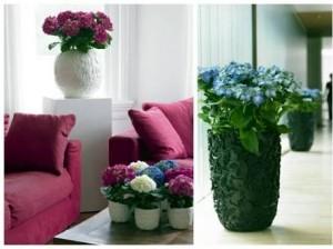 flowers-vase-at-corner